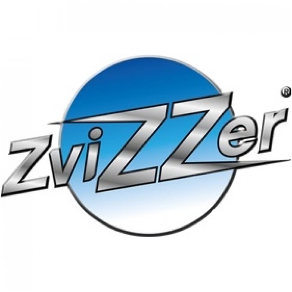 zvizzer-founded-1